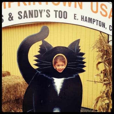 P black cat